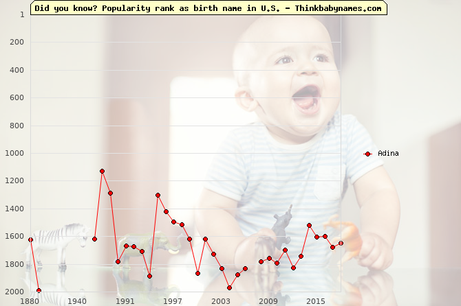 Top 2000 baby names ranking of Adina name in U.S.