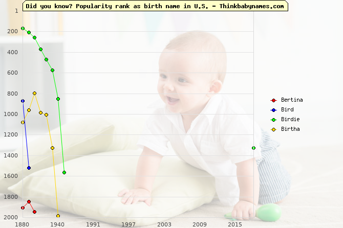 Top 2000 baby names ranking of Bertina, Bird, Birdie, Birtha in U.S.