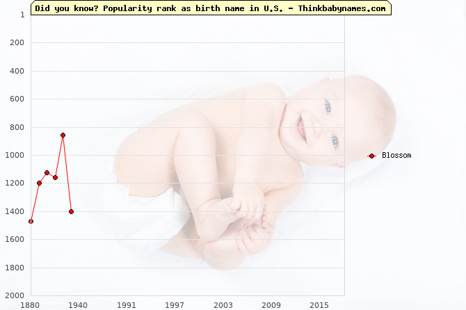Top 2000 baby names ranking of Blossom name in U.S.