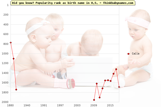 Top 1000 baby names ranking of Calla in U.S.