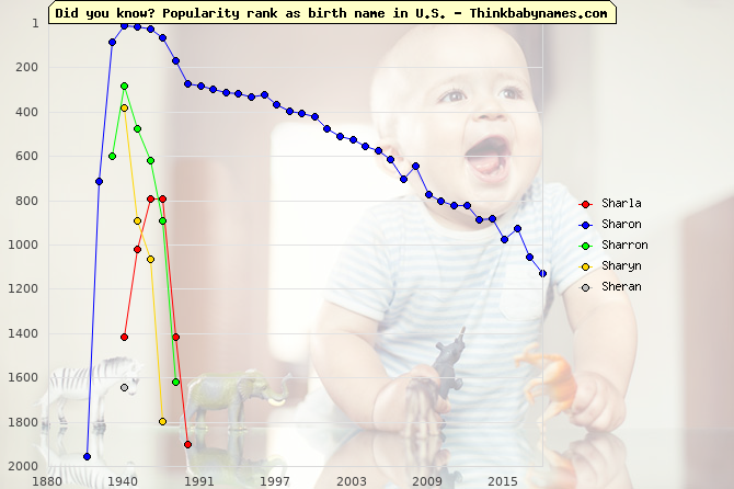 Top 2000 baby names ranking of Sharla, Sharon, Sharron, Sharyn, Sheran in U.S.
