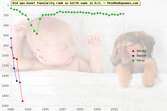 Top 2000 baby names ranking of Daisey, Daisie, Daisy in U.S.