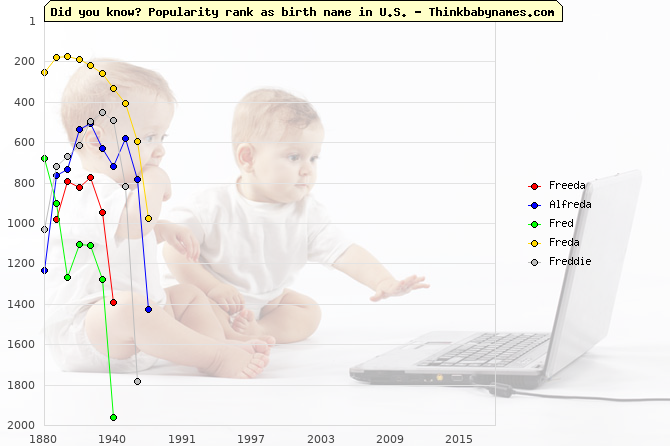 Top 2000 baby names ranking of Freeda, Alfreda, Fred, Freda, Freddie in U.S.