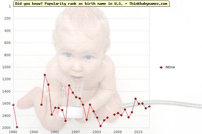 Top 2000 baby names ranking of Adina in U.S.
