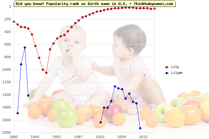 Top 1000 baby names ranking of Lily, Lilyan in U.S.