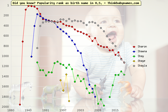 Top 2000 baby names ranking of Sha- names: Sharon, Shawna, Shay, Shaye, Shayla