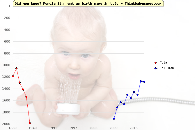 Top 2000 baby names ranking of Tula, Tallulah in U.S.