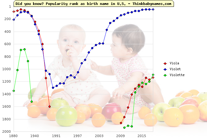 Top 2000 baby names ranking of Viola, Violet, Violette in U.S.