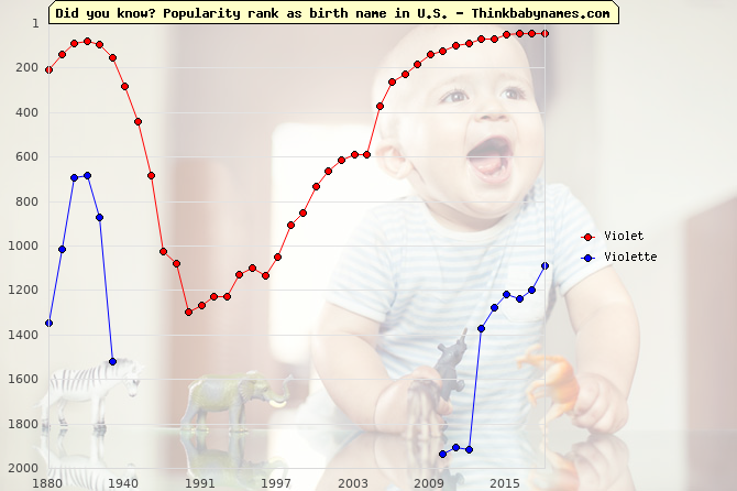 Top 2000 baby names ranking of Violet, Violette in U.S.