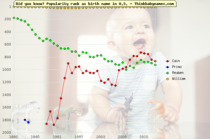 Top 2000 baby names ranking of Firstborn names: Cain, Primo, Reuben, William