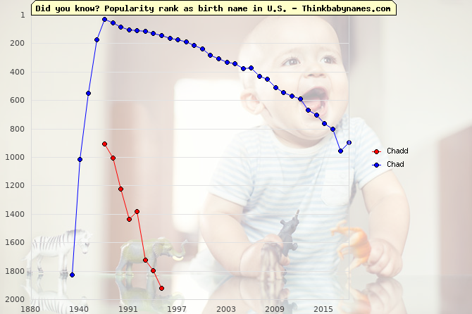 Top 2000 baby names ranking of Chadd, Chad in U.S.
