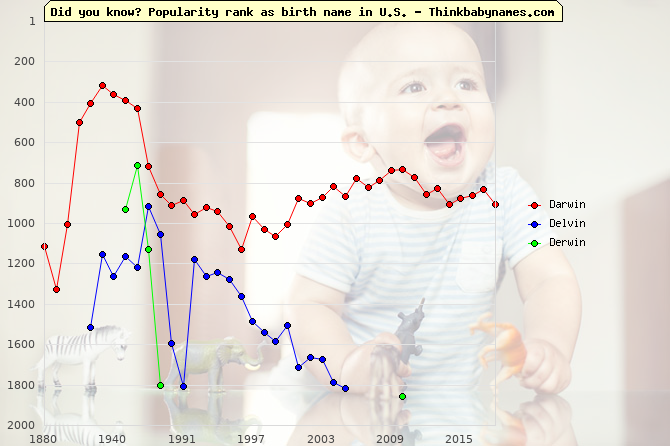 Top 2000 baby names ranking of Friend names: Darwin, Delvin, Derwin