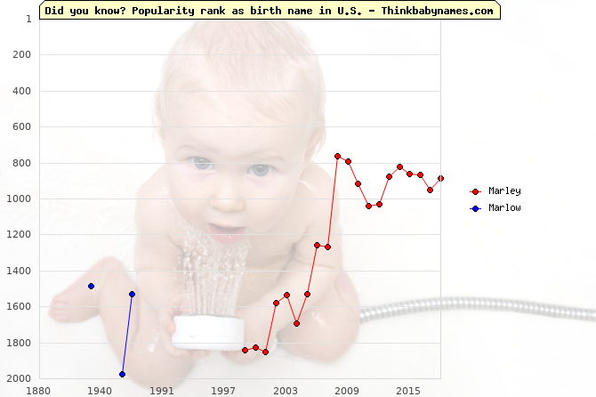 Top 2000 baby names ranking of Marley, Marlow in U.S.