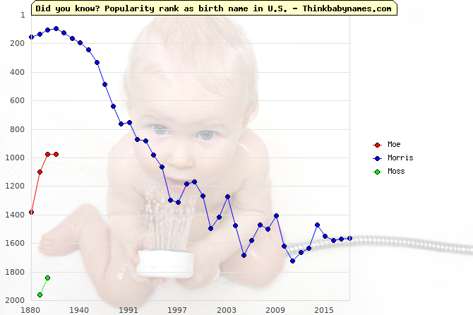 Top 2000 baby names ranking of Moe, Morris, Moss in U.S.