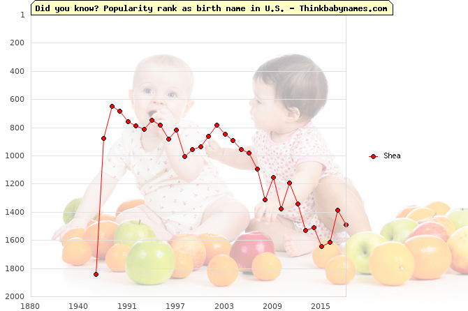 Top 1000 baby names ranking of Shea in U.S.