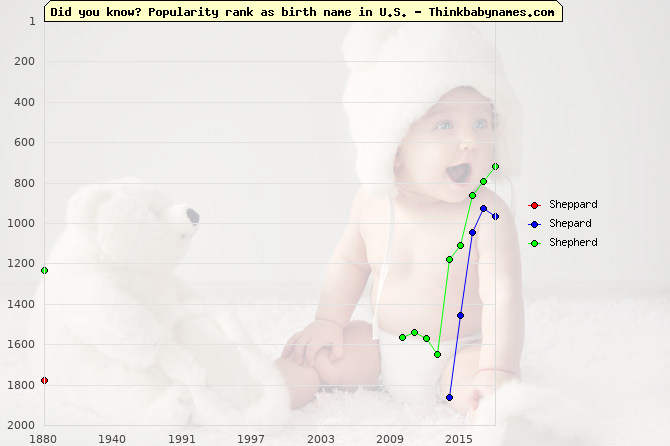Top 2000 baby names ranking of Sheppard, Shepard, Shepherd in U.S.