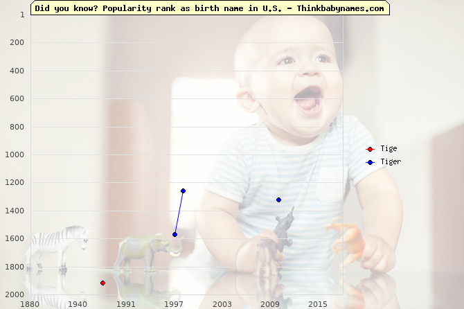 Top 2000 baby names ranking of Tige, Tiger in U.S.